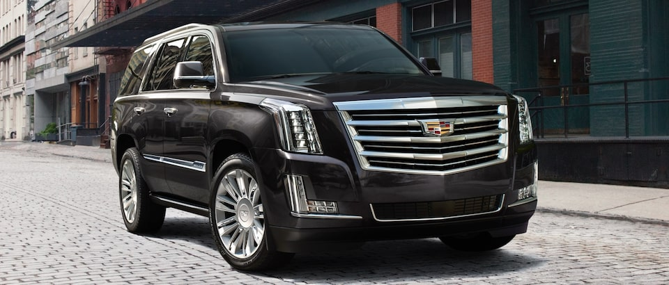 View GM Fleet Cadillac Escalade Luxury SUV professional Vehicle