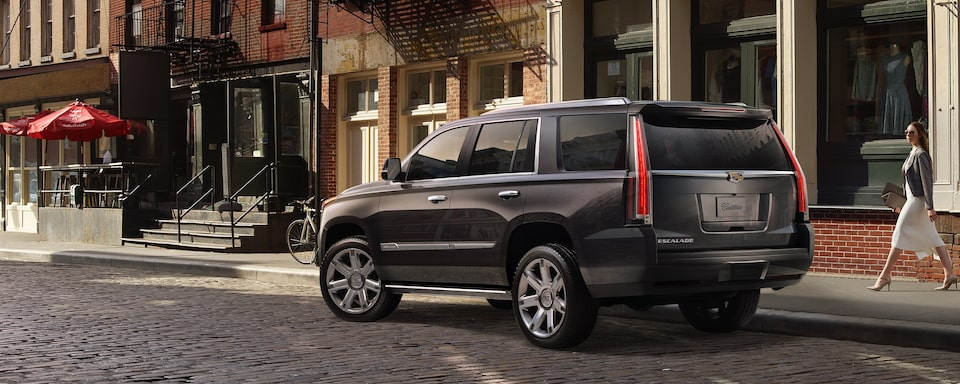 2019 Cadillac Escalade Luxury SUV Exterior Rear View